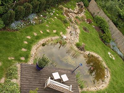 Der klare gartenteich for Graskarpfen teich